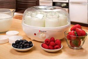 Yogurteras para hacer yogur en casa